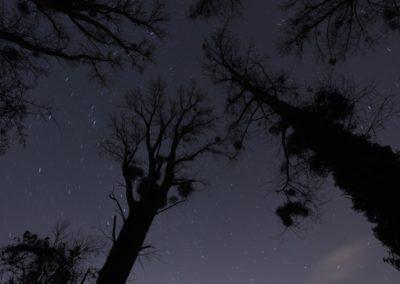 Andreas Schäfers Astro Fotos0057