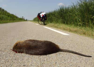 Andreas Schäfers Radtour Düsseldorf - Mallorca 4096